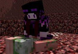 Minecraft Endie in the Nether [Endie X Zombie Pigman]